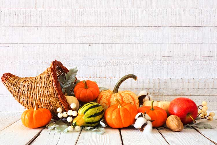 Thanksgiving / Fall pumpkins and other produce
